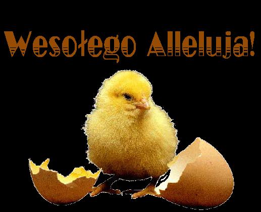 Kurczak życzenia